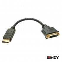 41004 - DisplayPort公 轉 DVI-D母 轉換器